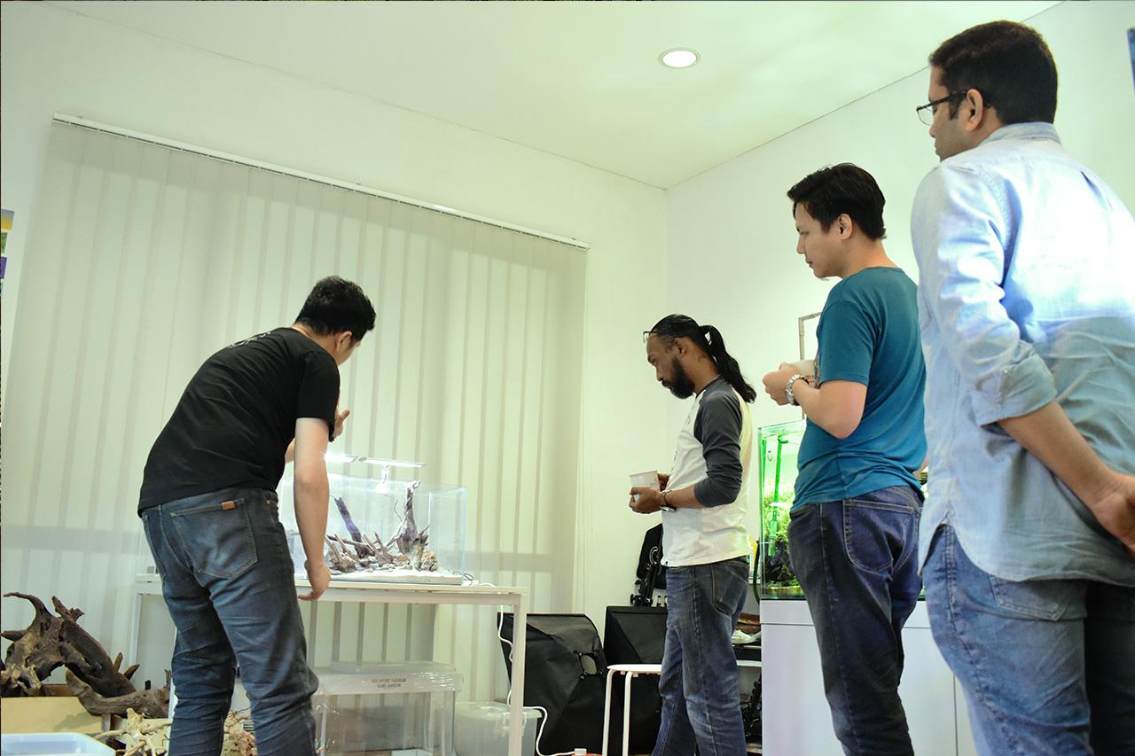 Aquascaping Workshop